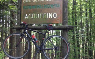 Domenica 16 luglio – La foresta biogenetica dell'Acquerino – Escursione