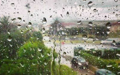 Domenica 18 marzo – Singin' in the Rain -Escursione